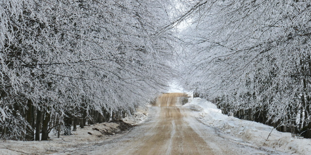 Snowshoeing January 25