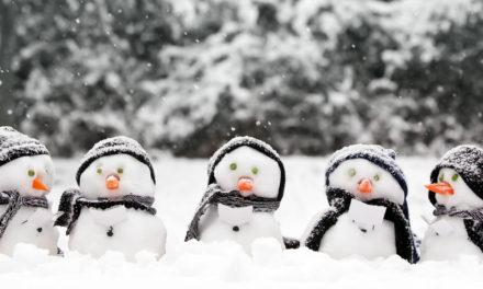 Winter activities – sign up at November meeting