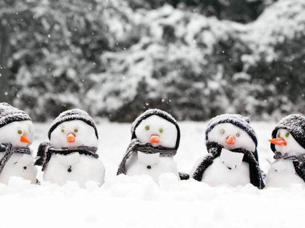 Winter activities - sign up at November meeting
