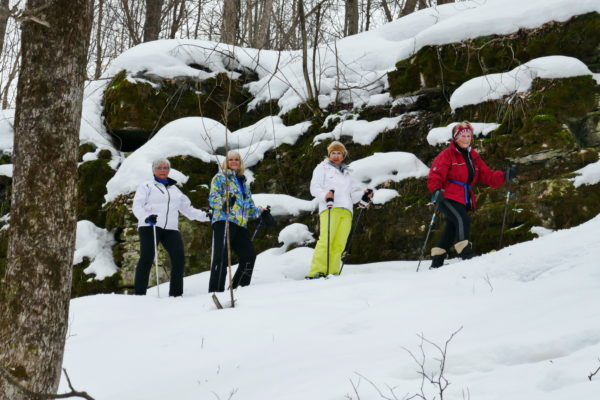Snowshoe and Lunch - Walter's Falls