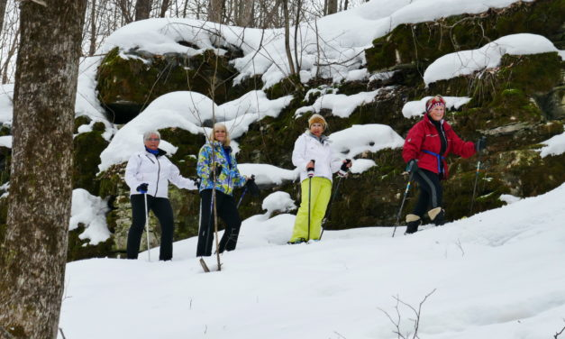 Snowshoe and Lunch – Walter's Falls