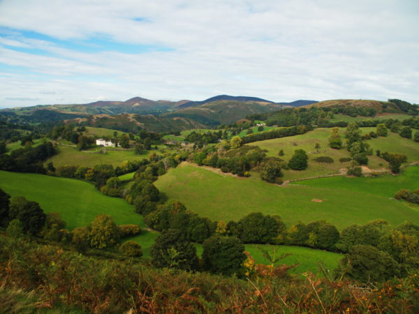 Travel Club - Wales (Enjoy a relaxing tour around the Welsh Canals and Countryside)