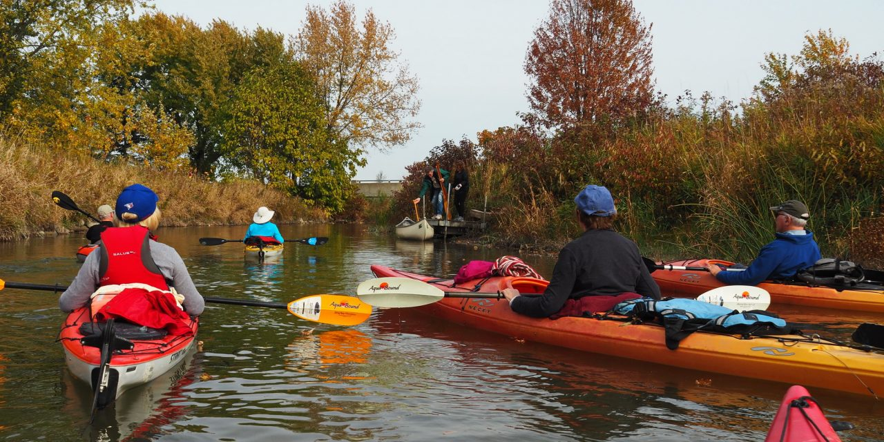 Kayaking the Minesing Wetlands…the water was COLD!