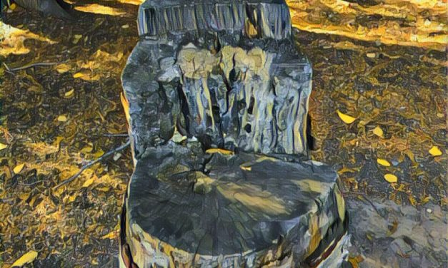 Nature's chair – by Darlene Tranquada