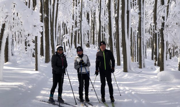 Let's Get Going Cross Country Skiing or Downhill Skiing