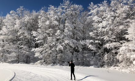 Fabulous XC Skiing season
