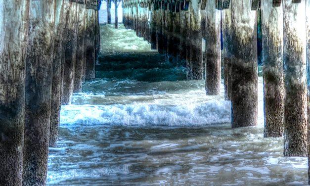 'Ocean Cloister' by Rachel May