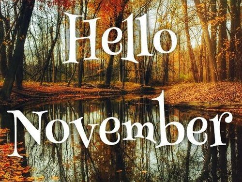 A November Welcome from your President